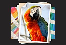 ورق الصور الفوتوغرافية مطبوع بطابعة 1.8 م (6 أقدام) مذيب بيئي WER-ES1802