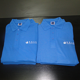 قميص بولو عينة الطباعة حسب الطلب من طابعة A3 تي شيرت WER-E2000T